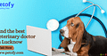 Find the best veterinary doctor in Lucknow